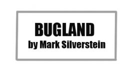 Birdland column 2020
